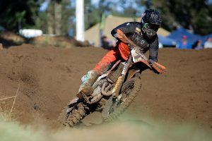 Team Australia applying no pressure on MXoN rookie Duffy
